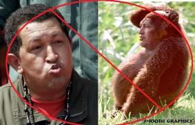 el simio bolivariano ha muerto